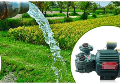 How to choose Water Pumps Adelaide for your house?