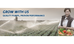 Fruit, Vegetable and Nut Growers - We understand your pumping needs